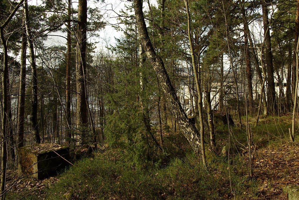 Paviljong i skogen til kunstutstillinger ?