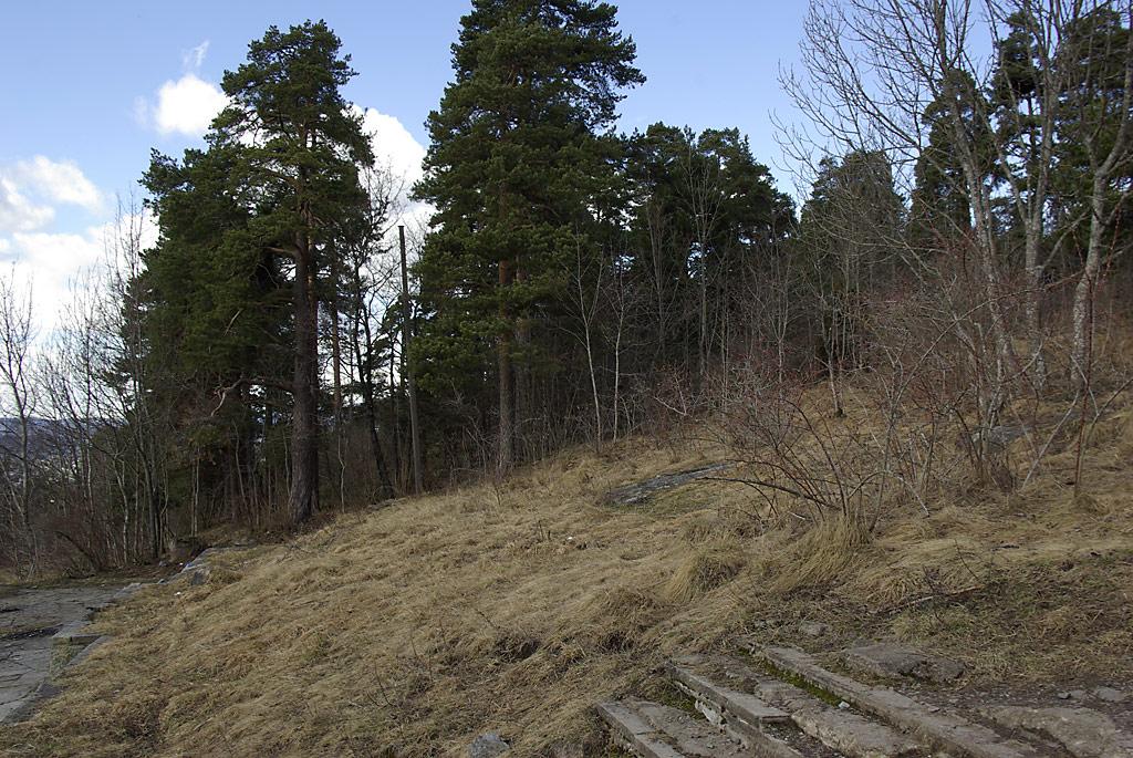 Tyskertrappa med skogholt